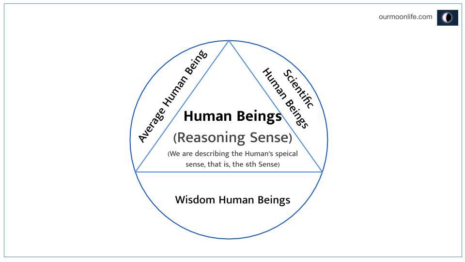 Average Human Being
