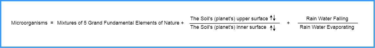 MicroOrganisms Formula 2